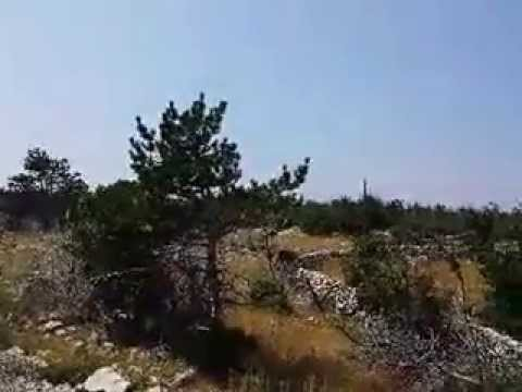 Geräusche in Kroatien