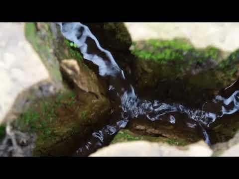 Wasser nach dem Regen