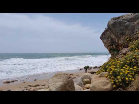 Wellen an der Algarve