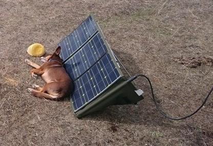 Tipp: Solarmodule nicht teilweise verschatten. Die Leistung bricht voll zusammen