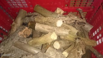 Wohnmobil Brennholz