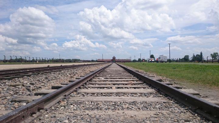 Konzentrationslager Auschwitz Birkenau