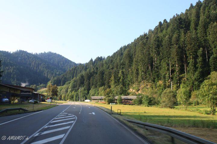 schwarzwaldtald