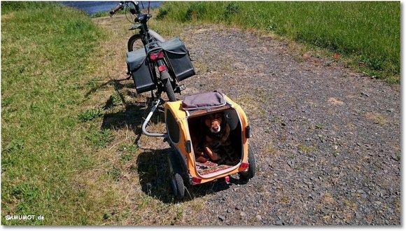 Mit Hund auf dem Ederradweg