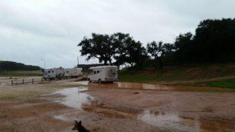 regen algarve