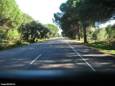 Bundesstrasse IC 1 Portugal