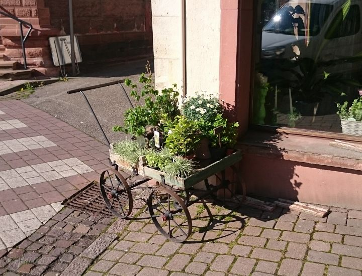 Altstadt Wissembourg