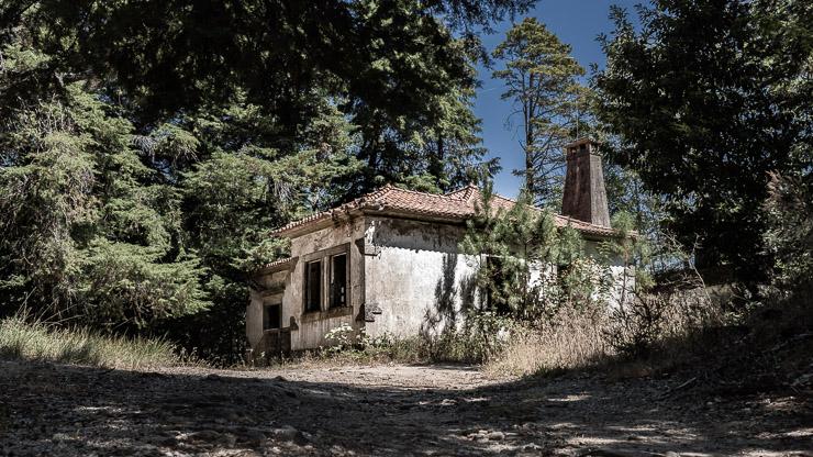 Ruine mitten im Wald