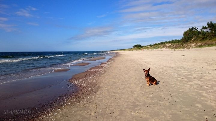 polnische ostsee strand