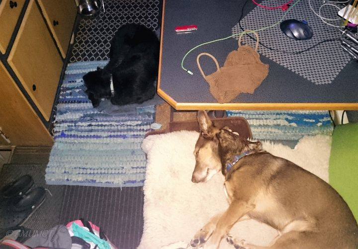 Beim schlafen ist Waffenruhe