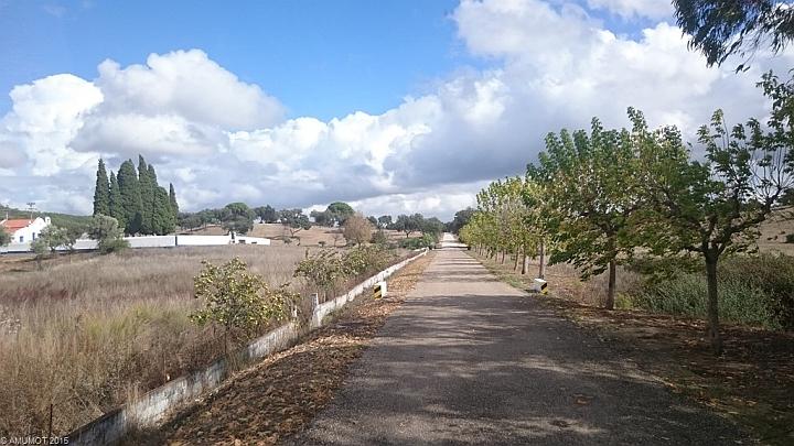 Sonne und kleine Straßen in portugal
