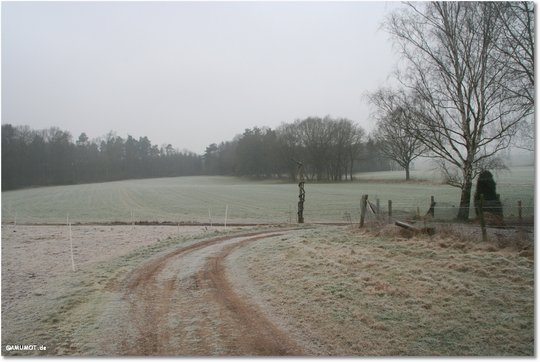 Reif und Nebel bedecken das Land