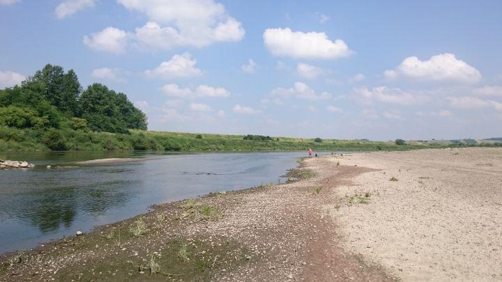 Sandbank an der Weichsel (Wisla) Polen