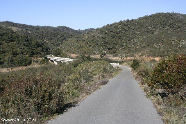 Straße durch Korkeichenwald