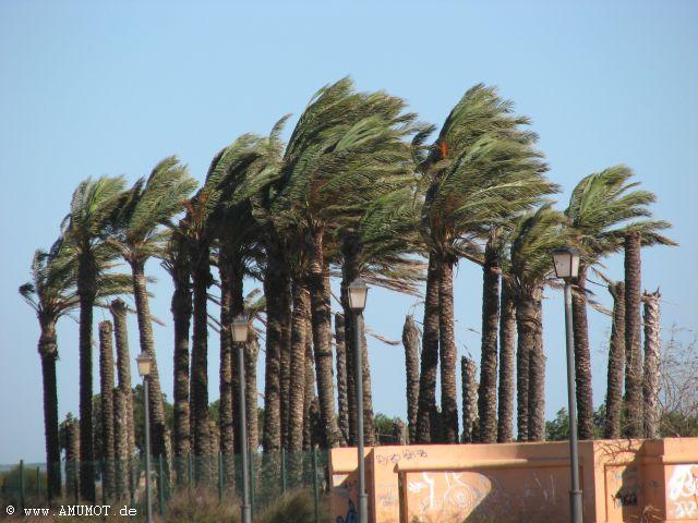 Sturm in spanien
