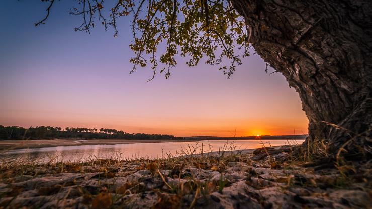 Sonnenuntergang See Baum