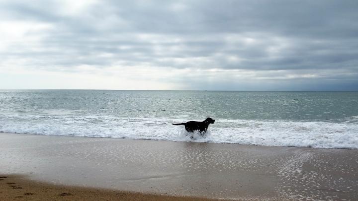 Strand von la Parée Préneau