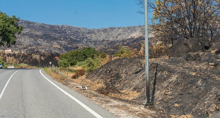 verbrannte Erde bis an den Straßenrand