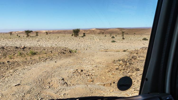 erg chegagag wadi piste