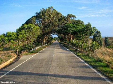 Zwischen Vila do Bispo und Carrapateira