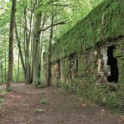 verlassene bunker wolfsschanze
